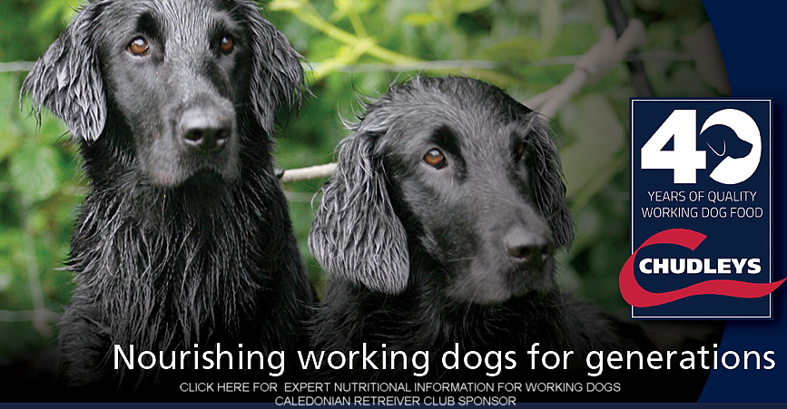 Chudley's - good food for working dogs